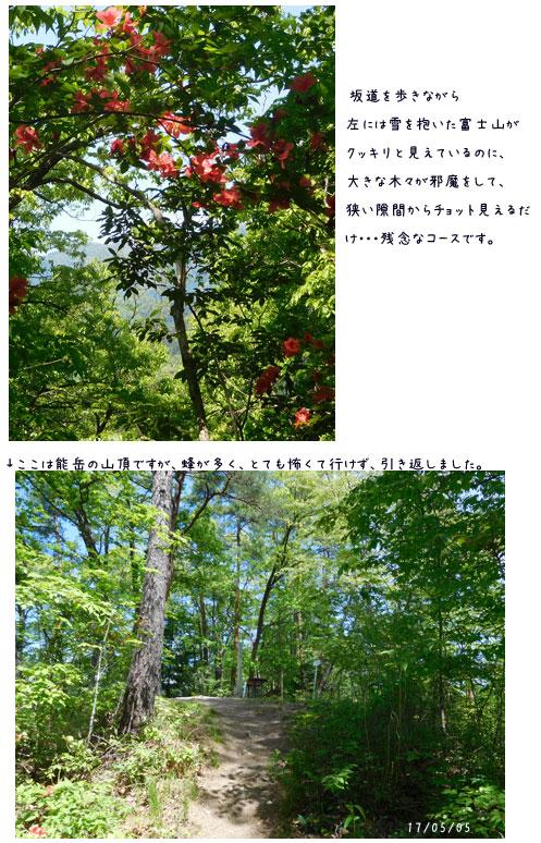能山から八重山をハイキング_c0051105_23215399.jpg