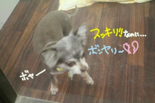 浅草_b0130018_14175662.jpg