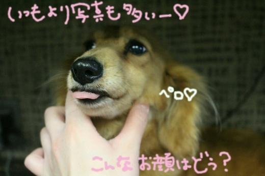 浅草_b0130018_19132570.jpg
