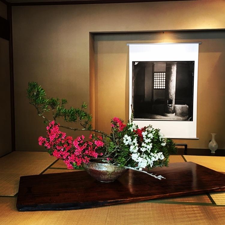 葉山芸術祭2017_d0334837_16530580.jpg