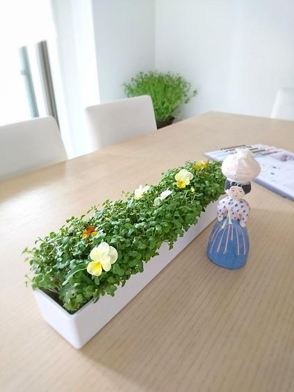 我が家の韓国料理教室 今回のテーブル装花は野菜!_b0060363_10552063.jpg