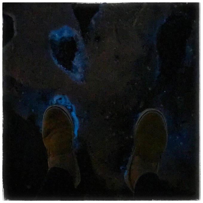 夜光虫♪_d0110465_11380212.jpg