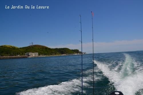 海のお散歩_f0329586_15320390.jpg