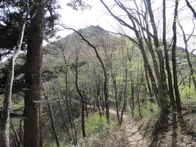 今年はまず、奥多摩・大岳山 1266.5m_a0122098_2037128.jpg