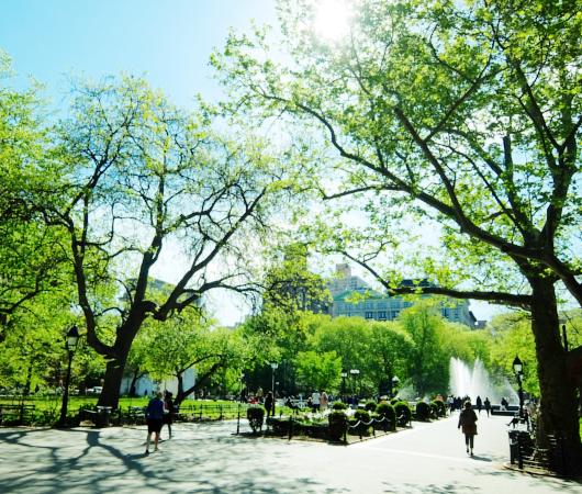 新緑の美しいワシントン・スクエア・パーク_b0007805_1825437.jpg