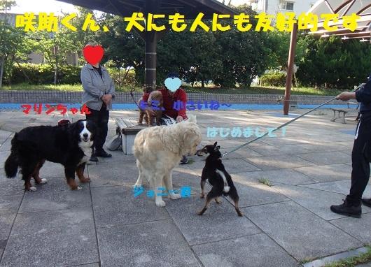 f0121712_00501447.jpg