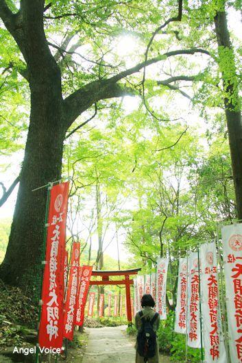 福岡旅3_d0147742_15342253.jpg