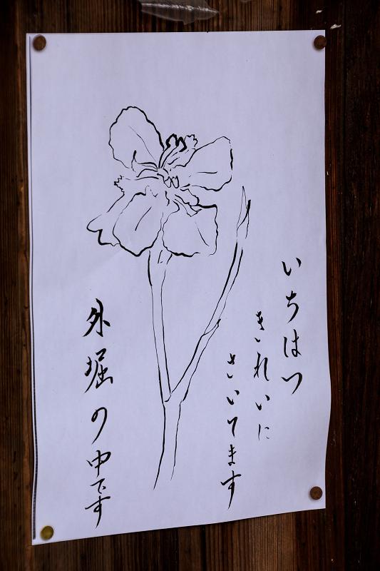 f0155048_16102666.jpg