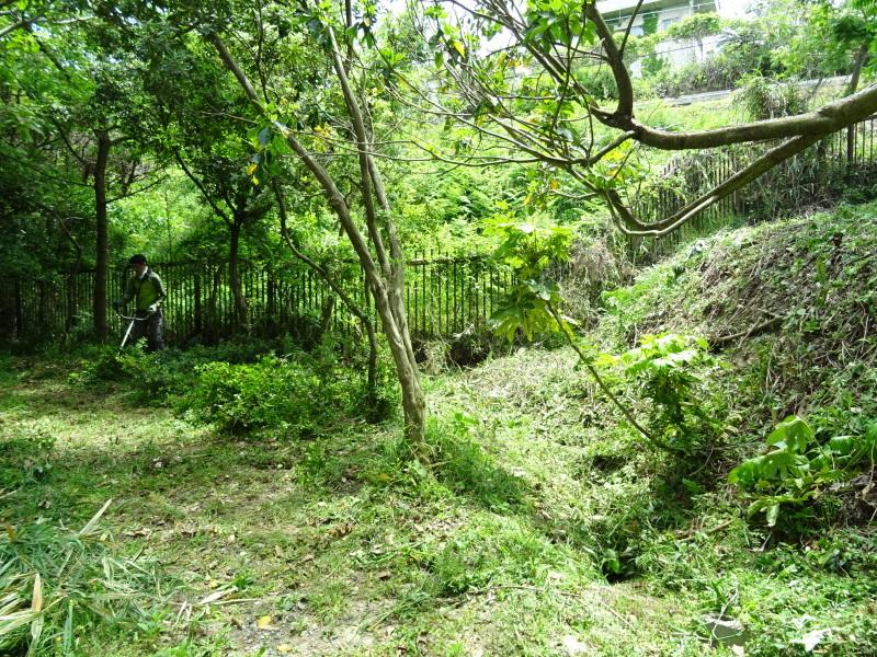 草刈り開始・・・うみべの森_c0108460_20302882.jpg