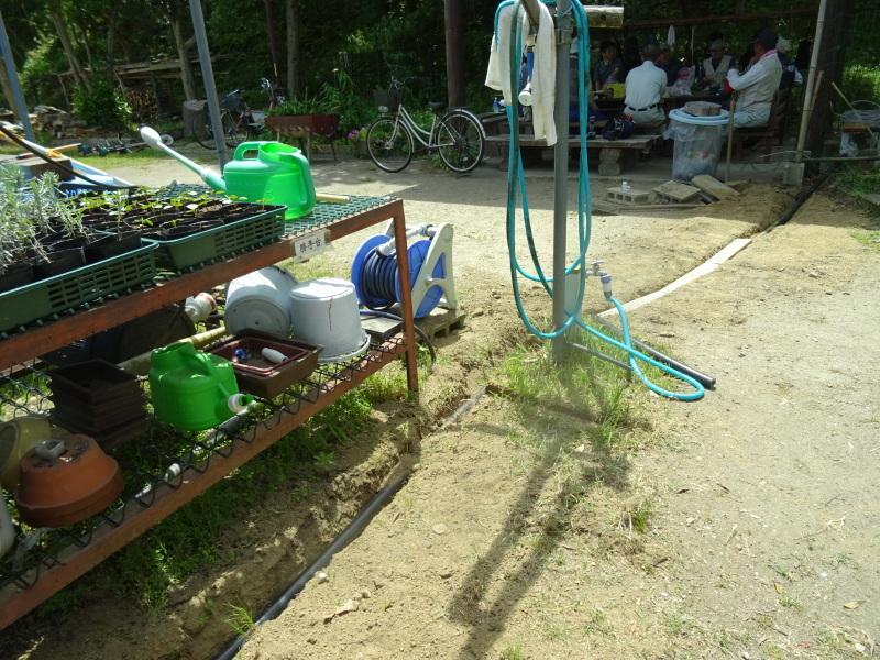 草刈り開始・・・うみべの森_c0108460_20315756.jpg