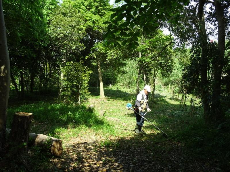 草刈り開始・・・うみべの森_c0108460_20392238.jpg