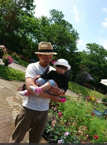 宮崎でこんな素敵な薔薇の花園があるんです・・・・それも今が絶好調🌹_b0137969_07171573.png