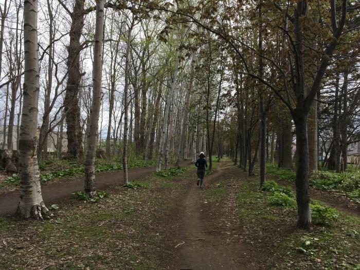 2017.4.29-5.1 食べてちょっと走る 札幌帰省の旅 _b0219778_16104482.jpg
