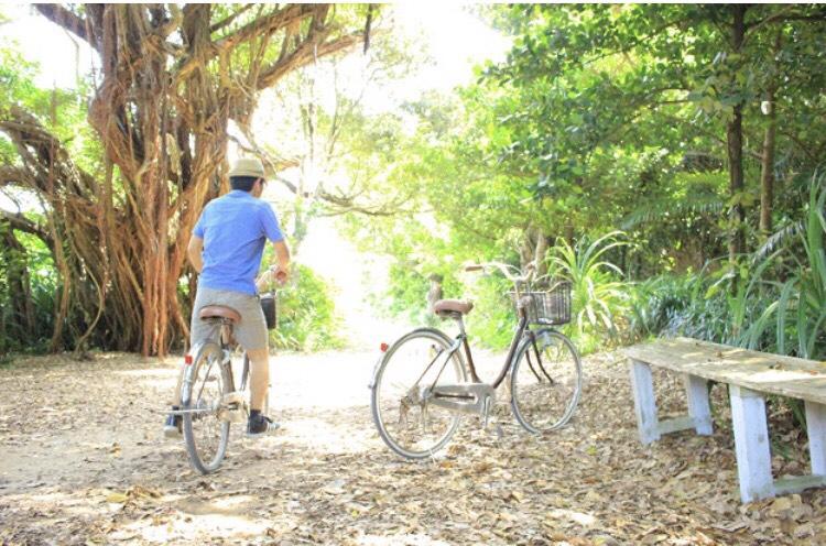 GWは自転車三昧?_d0351087_23493649.jpg