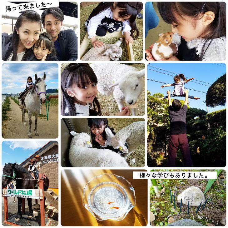 大阪から帰ってきました☆(命を学んだ時間)_d0224894_06261056.jpg