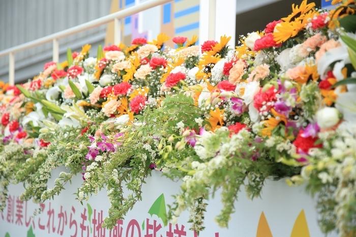 2017ひろしまフラワーフェスティバル(FF)「花いっぱい はばたけ平和の 咲く未来」_a0140608_08251115.jpg