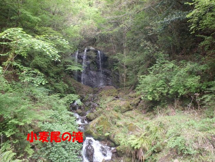 f0193521_1022011.jpg