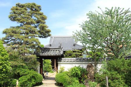 ゴールデンウィークの奈良散歩_b0165935_23032763.jpg
