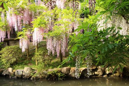 ゴールデンウィークの奈良散歩_b0165935_23043253.jpg