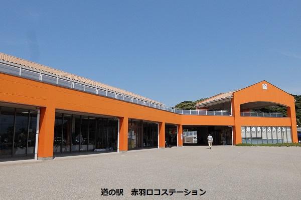 伊良湖漫遊_a0098746_1555465.jpg