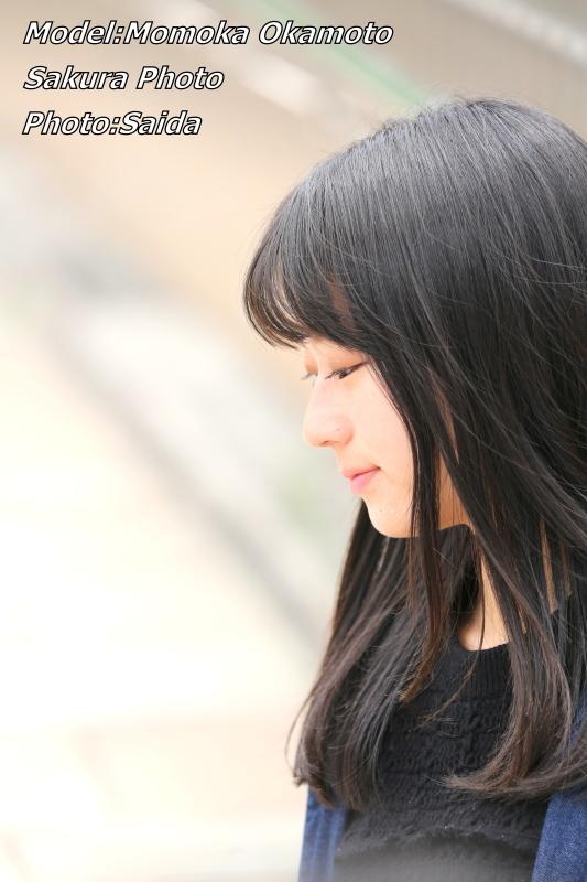 岡本桃香 ~ 矢場町周辺/ さくらフォト_f0367980_12535774.jpg