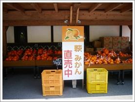 萩へ_b0142989_9381642.jpg