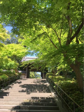 古都 鎌倉_c0195496_16041408.jpg
