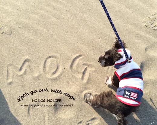 犬とおでかけ 前編_d0174704_15504918.jpg