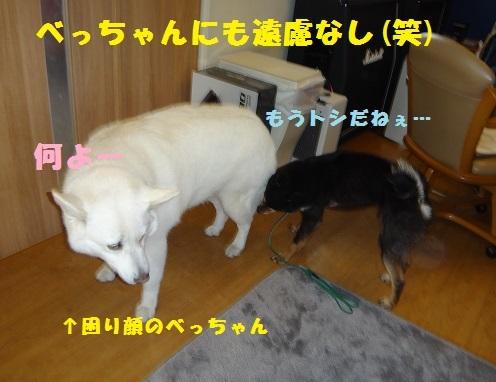 f0121712_15400626.jpg