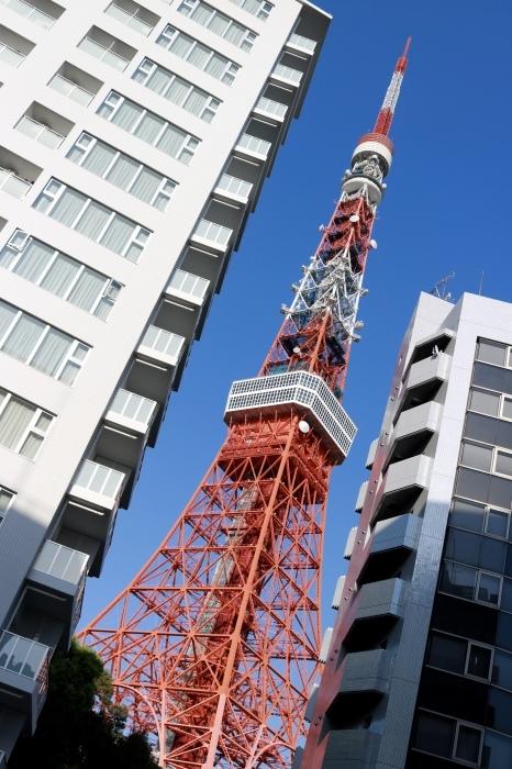 【東京タワー/鯉のぼり】_f0348831_19403878.jpg