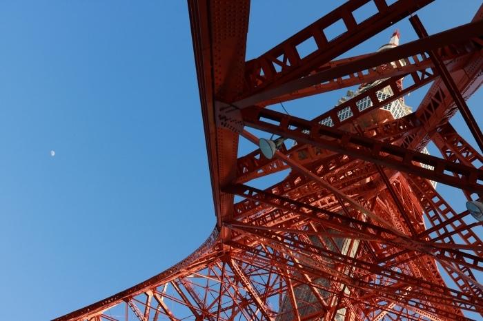 【東京タワー/鯉のぼり】_f0348831_19404266.jpg