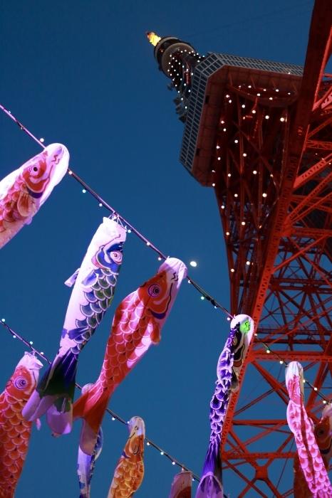 【東京タワー/鯉のぼり】_f0348831_19405777.jpg