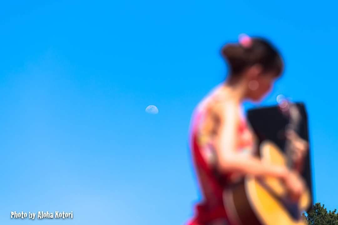 名古屋城 春の陣2017 せきともこギターコンサート_f0373339_142424.jpg