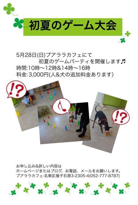 ご愛犬といっしょ☆★☆初夏のゲーム大会_d0256356_23263546.jpg