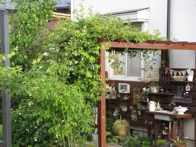 ガーデンリビングから見える初夏の庭_a0243064_19412676.jpg