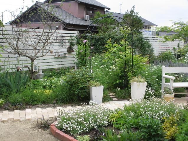 ガーデンリビングから見える初夏の庭_a0243064_19565548.jpg