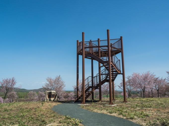 「村道沿いの一本桜」と「桜六花公園」村の桜が見頃です!_f0276498_16124620.jpg