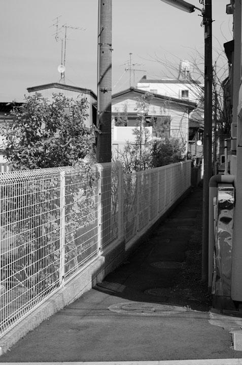 神田川笹塚支流跡をあるく2017-2_b0058021_2148381.jpg