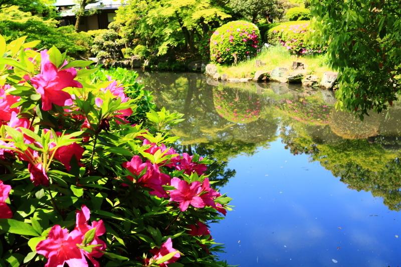 新緑の太閤園_f0209122_09080272.jpg