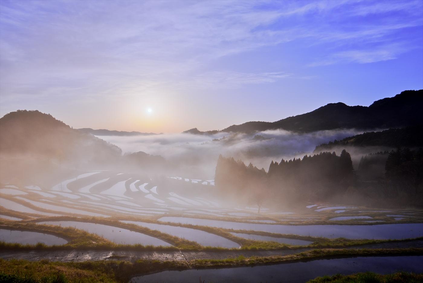 霧の夜明け 2 ~仲春の大山千枚田~ _f0018464_7395828.jpg