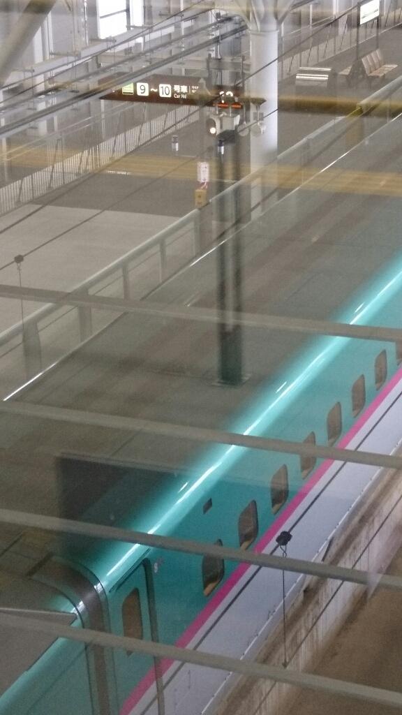 新函館北斗駅のショップおがーるにずーしーほっきーポケットティッシュケースを納品_b0106766_20483103.jpg