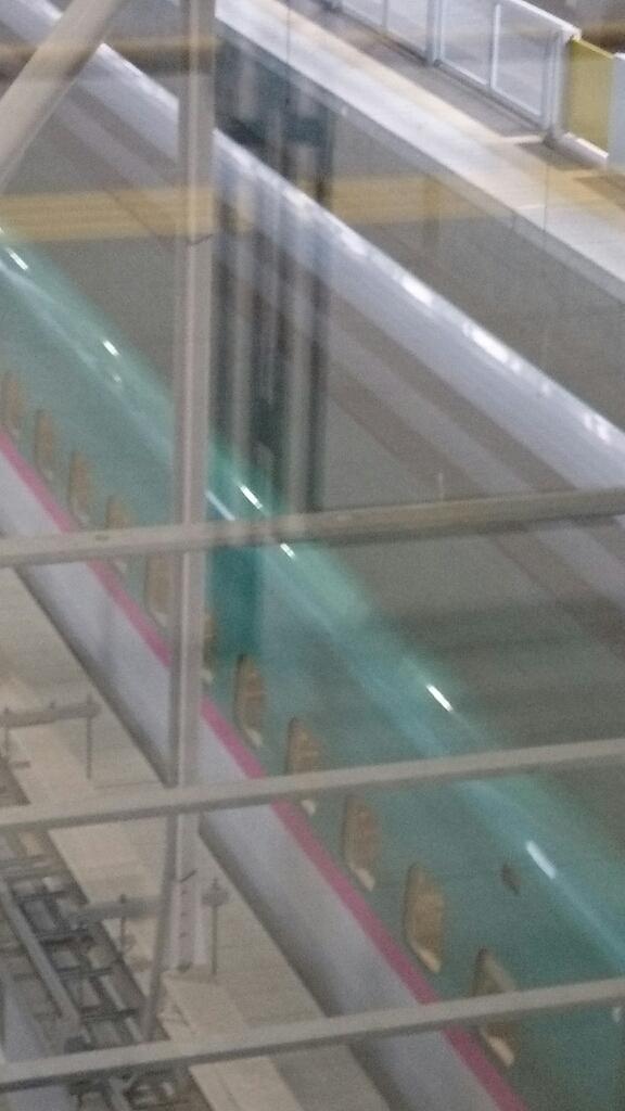 新函館北斗駅のショップおがーるにずーしーほっきーポケットティッシュケースを納品_b0106766_20483428.jpg
