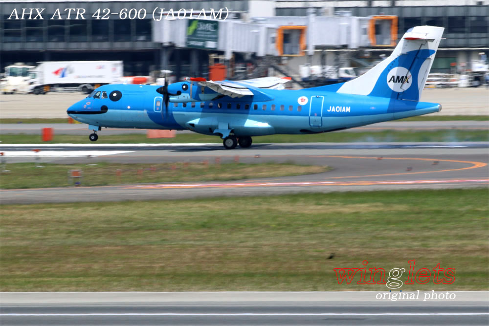 '17年 伊丹空港(RJOO)レポート ・・・ AHX/JA01AM_f0352866_21114248.jpg