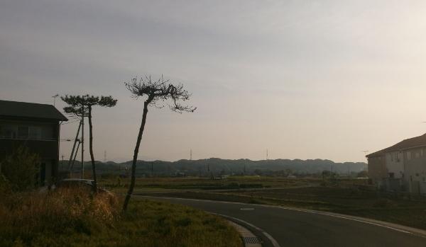 田舎の風景_d0000995_23155764.jpg