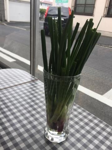 Tottoriカルマ  まるなげ食堂 _e0115904_02460677.jpg