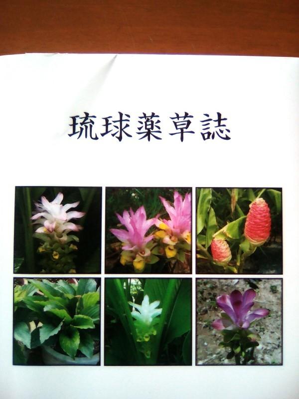 f0126141_10094685.jpg