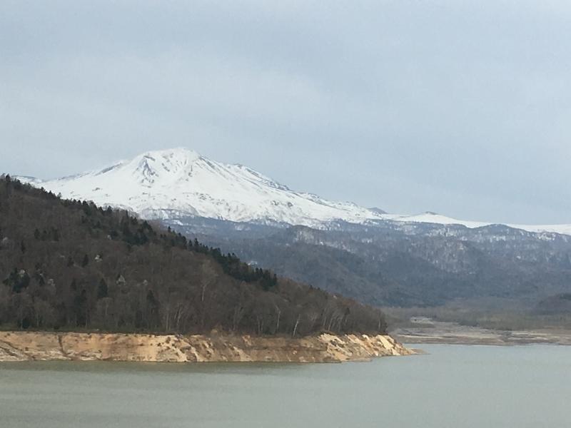 「聖台ダム」の桜と美瑛の庭_e0326953_16460832.jpg