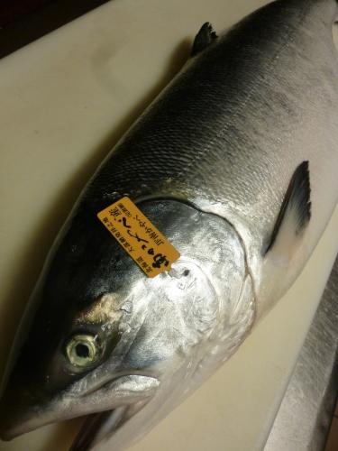 今日のお魚です!_e0252966_12282847.jpg