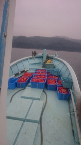 今週もカニ漁が盛んです_d0235898_23155127.jpg