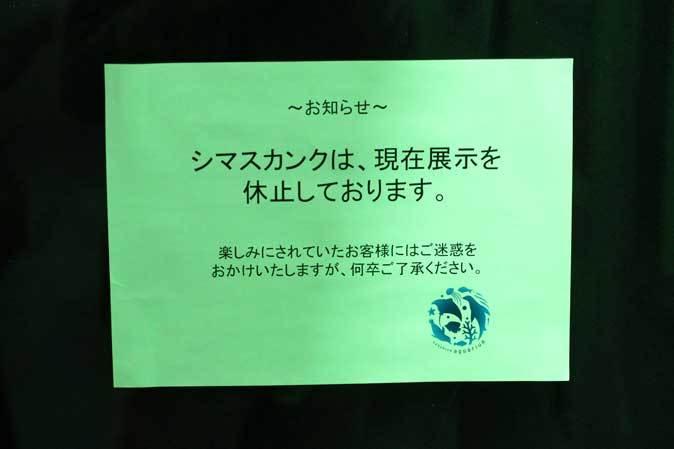 サンシャイン水族館「もうどく展2」~毒を利活用する生物~_b0355317_21565845.jpg